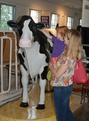 King Barn Dairy MOOseum, which highlights the history and technology of dairying, has life-sized model cows, Photo Credit: Sarah Rogers