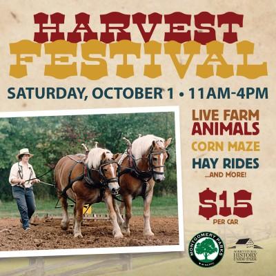 primary-Harvest-Festival-1469809429
