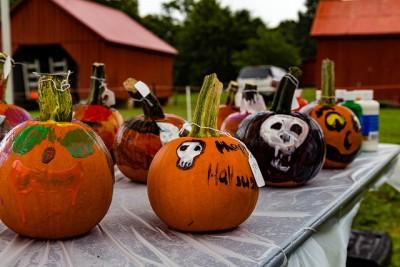 primary-Pumpkin-Panache-Family-Festival-1475699991
