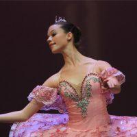 Akhmedova Ballet Nutcracker Dreams