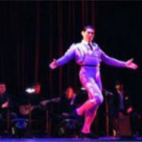 primary-Flamenco-Basics---Adults--13-Weeks--1480190724