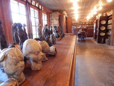 A view of Mary Bowron's studio and some of her 'Silent Witness' heads.