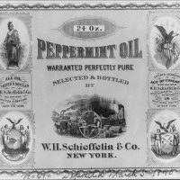Snake Oil Revisited: Plant Medicine in American History