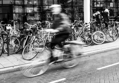 """""""Bicyclist,"""" Marleen Van den Neste"""