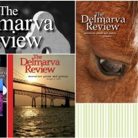 Open Door Reading: Delmarva Review Anniversary