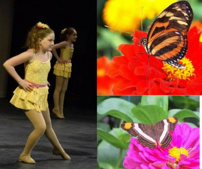 Ballerinas and Butterflies Exhibit