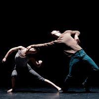 Roy Assaf Dance