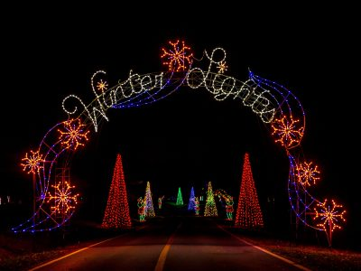 Winter Lights Festival