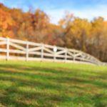 Underground Railroad Trail Saturday Guided Hike