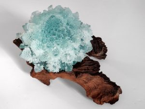 Wild Things: National Capital Art Glass Guild