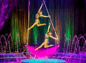 Performers climb, slide down and hold poses in the Chinese pole act.