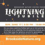 Lightning Bug Jubilee