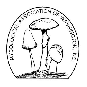 Wild Mushroom Tasting