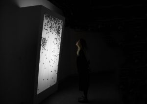 Estefaní Mercedes: VisArts Studio Fellowship