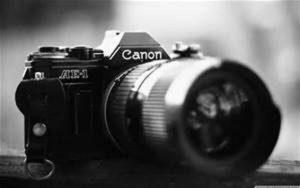 Art through the Lens: Macro Photography