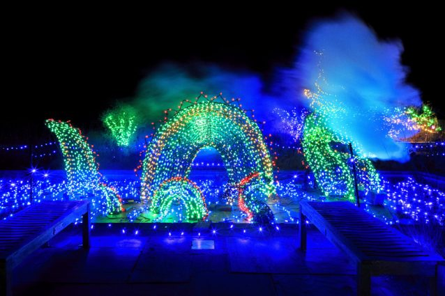 Beware the dragon in the Brookside Gardens' Garden of Lights.