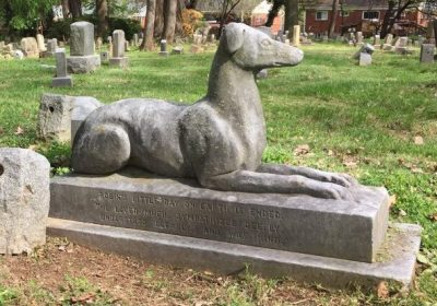 Museum After Hours: Aspin Hill Pet Cemetery