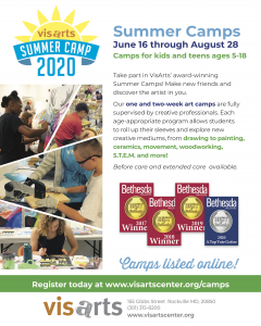 VisArts Summer Camp