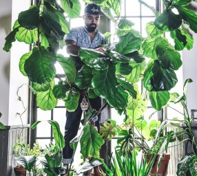 Garden After Dark: Wild at Home with Hilton Carter (CANCELED)