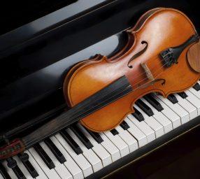Symphony of the Potomac Concert