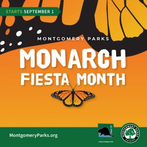 Monarch Fiesta Month