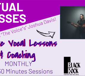 Private Guitar, Ukulele, Banjo and Songwriting Lessons with Joshua Davis