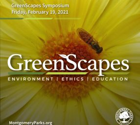 Greenscapes Symposium - Back to Our Roots: Leveraging Native Plants to Restore the Environment