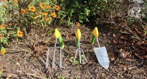 Therapeutic Recreation – Gardening 101