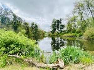 Nature Virtual Lectures: Climate Change and Montgomery County