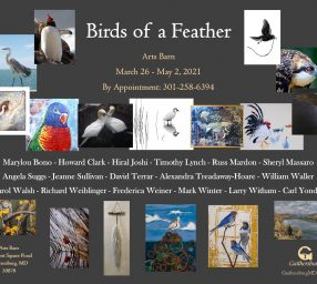 """""""Birds of a Feather"""" Exhibit at the Arts Barn"""
