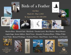 """Birds of a Feather"" Exhibit at the Arts Barn"