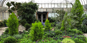 Brookside Gardens Conservatory Reopening