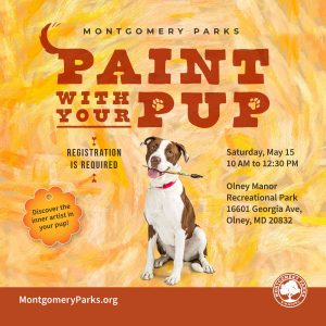 Paint with your Pup