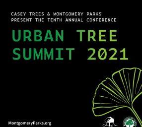 Urban Tree Summit