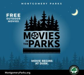 Movies in the Parks