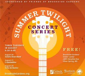 Summer Twilight Concert Series