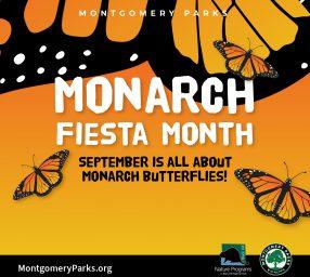 Monarch Fiesta Month