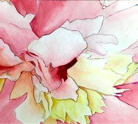 Watercolor for Beginners *Online & Onsite*