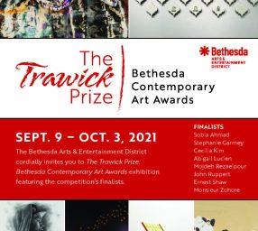 19th Annual Trawick Prize: Bethesda Contemporary Art Awards