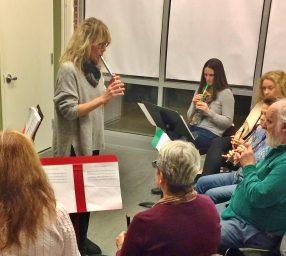 Advanced Beginners Irish Flute and Tin Whistle