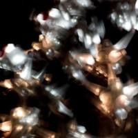 Luminescent Anthologies: Matthew McCormack and Jenn Figg