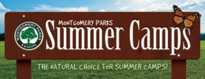 summercamps_mpinterior