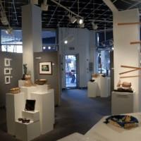 Waverly Street Gallery
